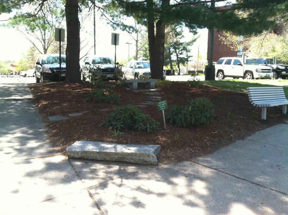 dover-pride-cleanup-day-15