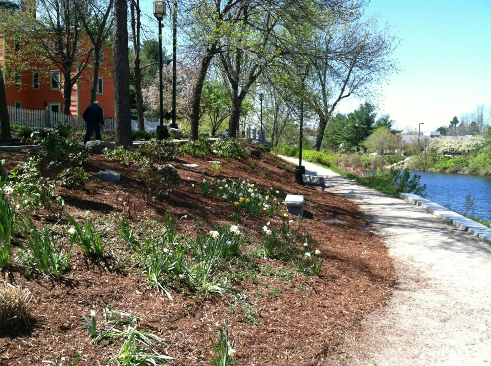 dover-pride-cleanup-day-21
